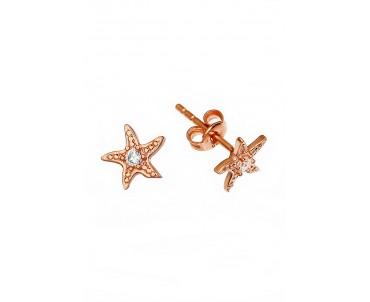 Gümüş Deniz Yıldızı Küpe -...